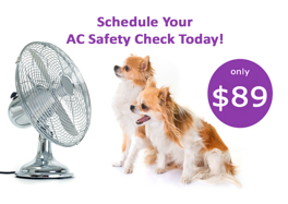 dogs and AC fan 2020